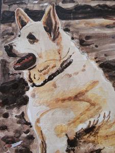Socarrat perro mascota detalle